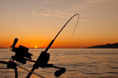 recreational activities - fishing in Carling